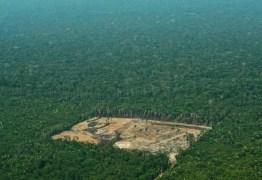 Bolsonaro quer entregar a Amazônia – Por Eliane Brum