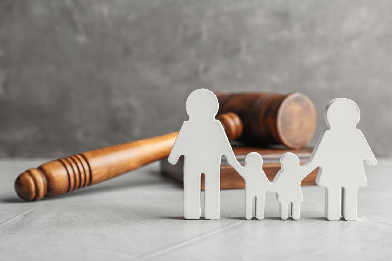 direito sistêmico 4 - Direito Sistêmico oxigena e humaniza judiciário brasileiro