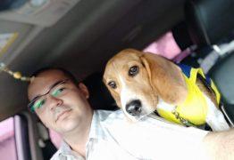 Homem batiza cão de Sérgio Moro e registra o animal como membro da família