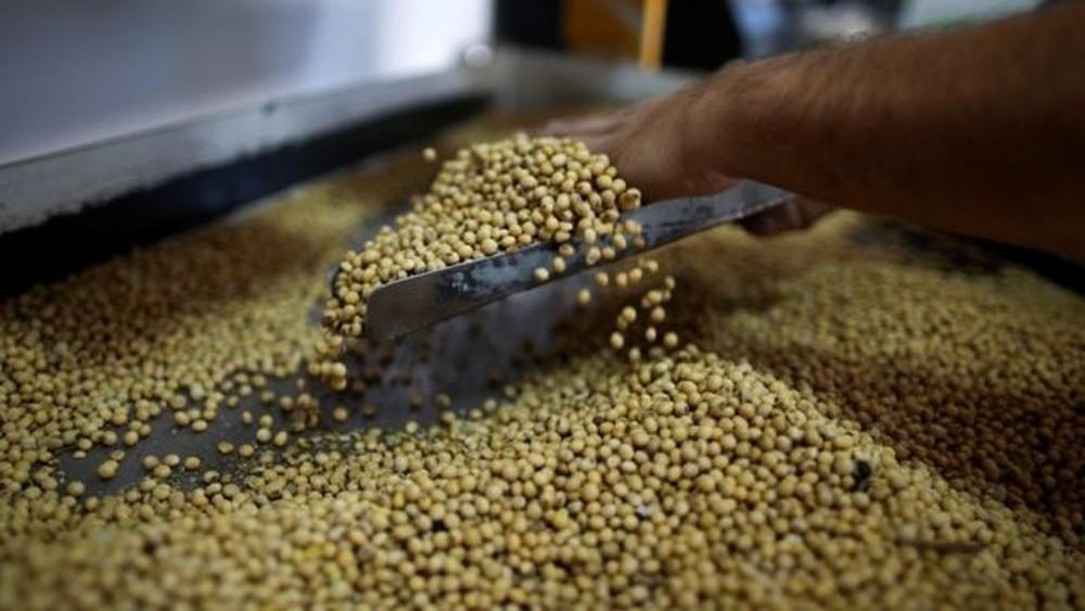 soja exportação brasil - ESTAMOS NO LUCRO: Guerra econômica entre China e EUA aumentou exportações do Brasil