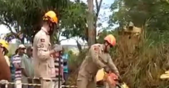 rvore se parte em Matinhas  - Motociclista morre e colega fica ferido após queda de árvore na região de Campina Grande