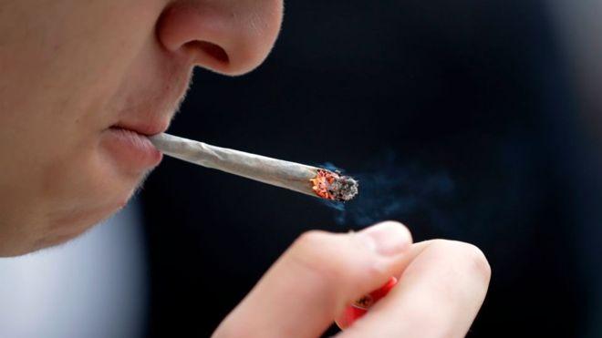 103397042 gettyimages 957691616 - Maconha causa mutação em espermatozoides e homens devem parar de fumar 6 meses antes de terem filhos