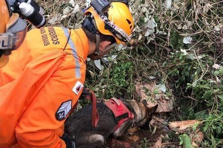 brumadinho resgate 26012019143015215 - Bandidos usam Brumadinho para dar golpe em pessoas dispostas a ajudar