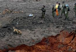TRAGÉDIA EM BRUMADINHO: número de mortes confirmadas sobe para 110