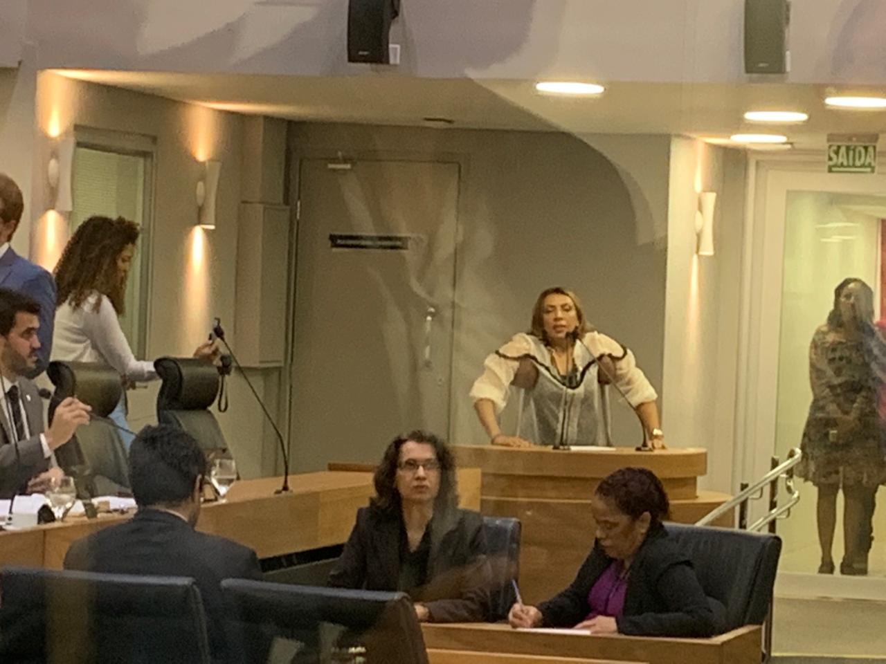 33fc2ea9 0150 4678 86af 173f66aa4eca - ACESSIBILIDADE: 'É uma casa de leis que cumpre leis', diz Cida após reforma do plenário