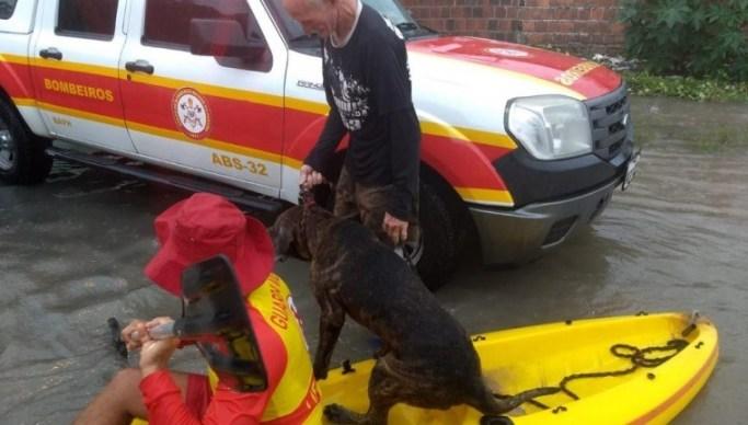 Bombeiros chuvas JP 1 - UM RESGATE ANIMAL: Bombeiros usam caiaques para resgatar pessoas e um cachorro que estavam ilhados após chuvas em João Pessoa