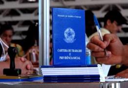 Desemprego cai em 18 estados incluindo a Paraíba, diz IBGE