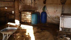 6521691 x720 300x169 - MPT realiza força-tarefa nos matadouros da Paraíba