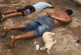 Cachorrinha 'se entrega' à polícia durante prisão do dono por tráfico
