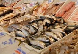 SANTA COMIDA CARA: pesquisa do Procon-JP registra diferença de até R$59,99 no preço do quilo do peixe
