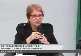 Ministra da agricultura diz que 'brasileiro não passa muita fome porque tem muita manga nas cidades'