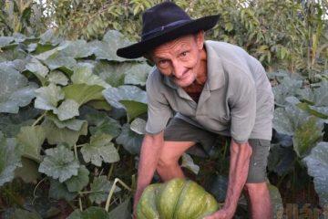Agricultor cultiva jerimum de quase 10 quilos em Cajazeiras – VEJA VÍDEO
