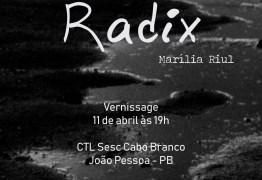 Exposição da artista Marília Riul inicia programação do ExpoSesc 2019