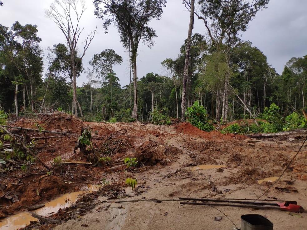 maquina prf3 - CORRUPÇÃO: Operação em 8 estados e no DF mira esquema de desmatamento ilegal na Amazônia