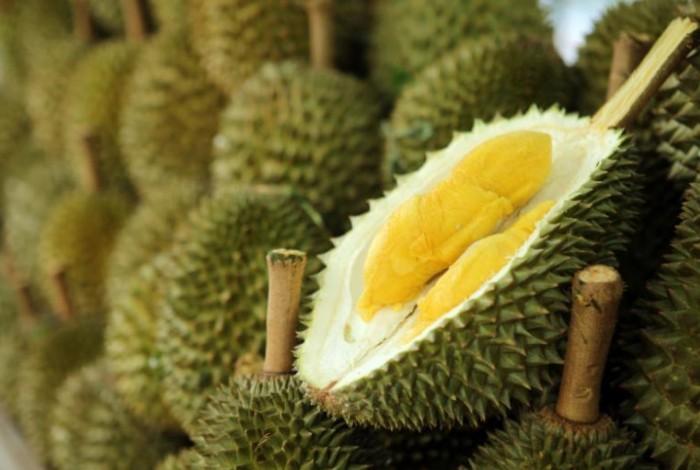 1 durian 11057788 - Biblioteca é evacuada por causa do cheiro da fruta mais fedida do mundo