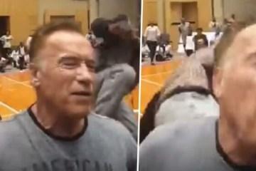 arnold - Arnold Schwarzenegger leva voadora e diz que nem sentiu - VEJA VÍDEO