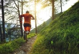 Suplementos de colágeno: podem ajudar a reparar e recuperar músculos? Especialista explica