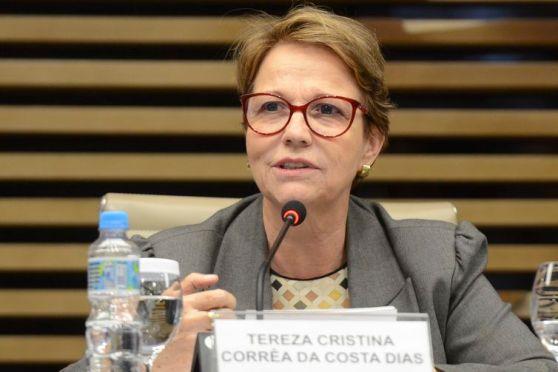 ministra 300x200 - Líderes da agricultura se comprometem com a segurança alimentar global