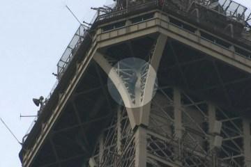 torre eiffel  - Torre Eiffel é esvaziada após pessoa tentar escalar o monumento