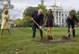 Árvore plantada por Trump e Macron como sinal de amizade morreu