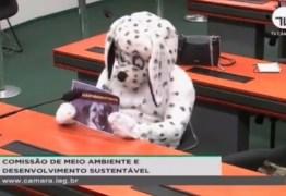 Homem vestido de cachorro protesta em sessãoda Câmara dos Deputados – VEJA VÍDEO