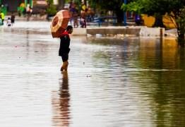 Água da chuva acumulada pode causar febre tifoide e leptospirose e sintomas são confundidos com os da dengue