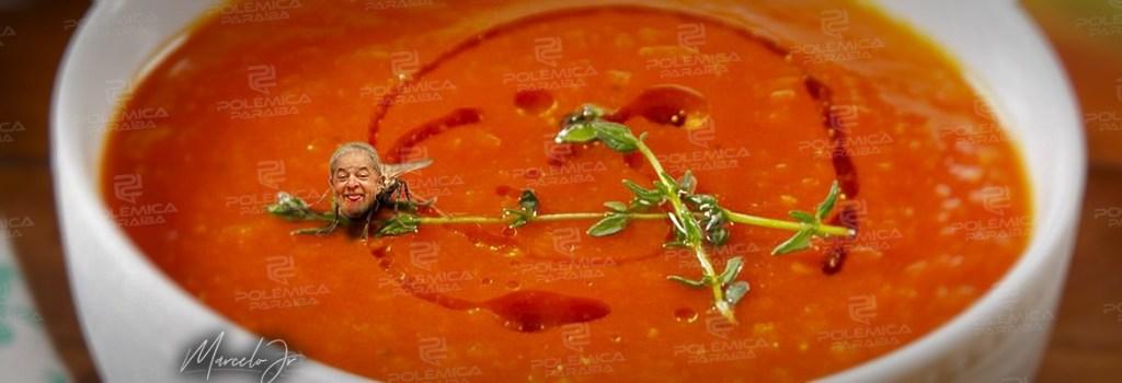 montagem509 1024x350 - Lula insiste em ser a mosca na sopa da geleia da política tupiniquim - Por Nonato Guedes
