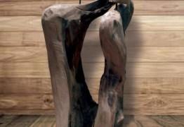 ARTE NA EMPRESA: Exposição do paraibano Gilton Lira chega a Patos