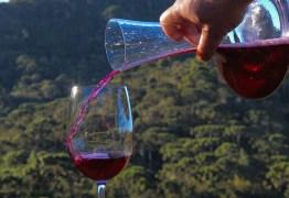 Problemas climáticos podem derrubar produção de vinho na França