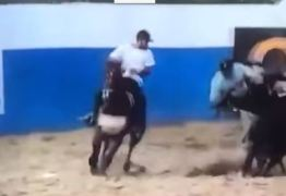 Empresário morre após queda de cavalo em vaquejada no município de Catingueira – VEJA VÍDEO DO ACIDENTE