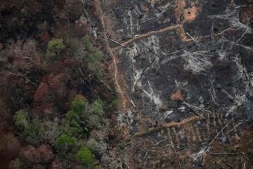 2019 08 22t171331z 1380387375 rc1407e68c50 rtrmadp 3 brazil environment wildfires ueslei marcelino reuters - 'A Amazônia precisa ser protegida', diz secretário-geral da ONU