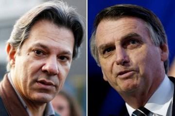 Haddad chama Jair Bolsonaro de verme e convida Doria a pautar impeachment