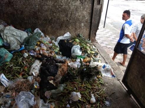 WhatsApp Image 2019 08 03 at 13.25.22 300x225 - SUPOSTO ENVENENAMENTO: animais são encontrados mortos em lixo do Mercado da Torre, em JP; VEJA VÍDEOS