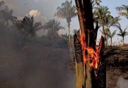 Quatro estados pedem ajuda das Forças Armadas para combate a incêndios; saiba quais