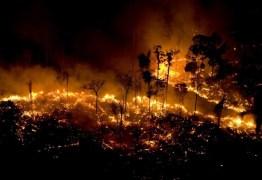 O que está acontecendo na Amazônia? Ambientalistas explicam queimada