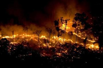 queimada - O que está acontecendo na Amazônia? Ambientalistas explicam queimada