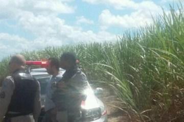 Corpos carbonizados  - Polícia encontra corpo de homem dentro de canavial em Sapé