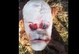 Bezerro nasce com 'rosto humano' e assusta moradores de vilarejo – VEJA VÍDEO