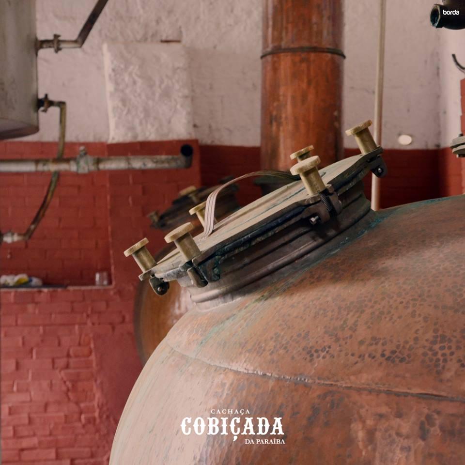 cob02 - NA ROTA DA CANA: A Cobiçada produz uma cachaça 'tipo exportação' na cidade de Serraria