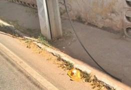 Ladrão fratura tornozelo após tentar roubar fios de rede telefônica e cair de poste