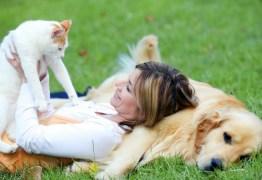 Animais de estimação podem promover saúde e contribuir para o tratamento de doenças, afirma especialista