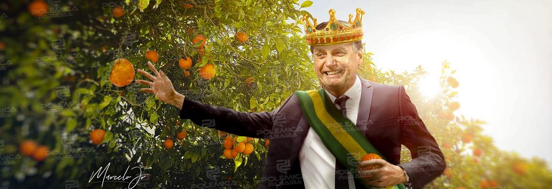 WhatsApp Image 2019 10 07 at 11.34.27 - Pomar da impunidade – No país das laranjas absolvição para quem for amigo do rei! - Por Francisco Aírton