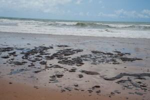a2bc20119fd9543795d0b0e45a59b020 300x200 - Ministro da Defesa diz que origem de óleo vazado está sendo apurada