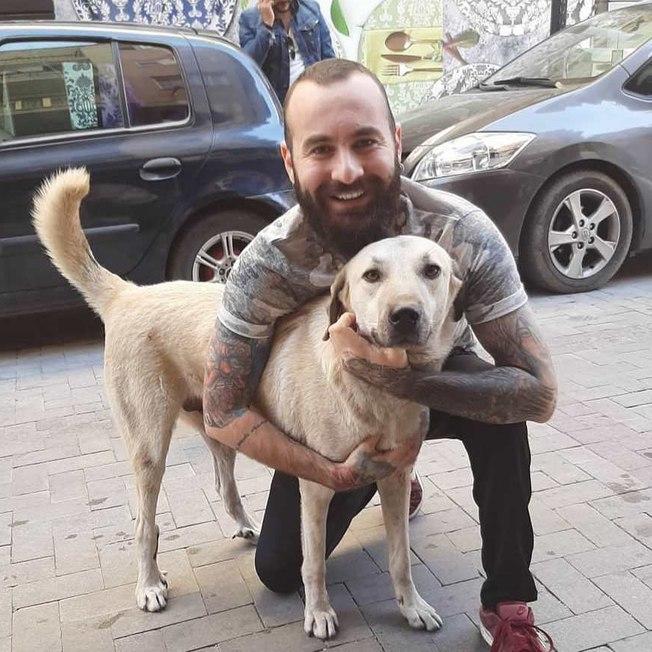 a7axqt5hq0utupk91qu4sjwf9 - Câmera flagra homem em cena surpreendente com cachorro de rua e viraliza; VEJA VÍDEO