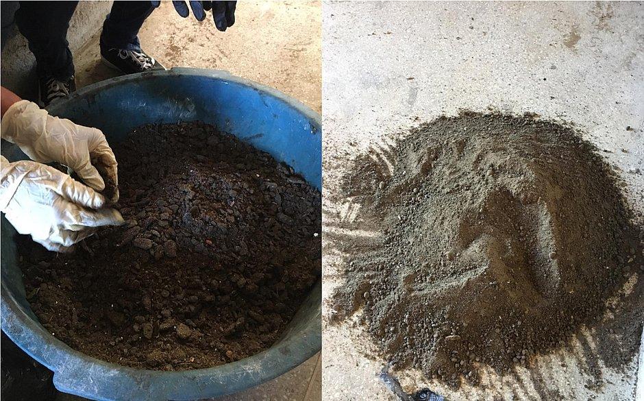 carvão - Instituto de Química da UFBA transforma óleo recolhido de praias em carvão