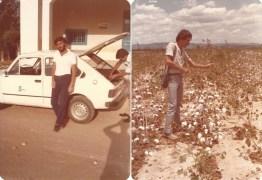 ALGODÃO COLORIDO: Pesquisador ajuda a tornar Campina Grande referência mundial