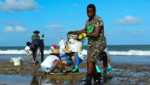 naom 5dad745c5b0d3 300x169 - Voluntários usam materiais de jardinagem para recolher óleo