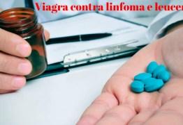 Viagra contra o câncer: pode ajudar a tratar linfoma e leucemia