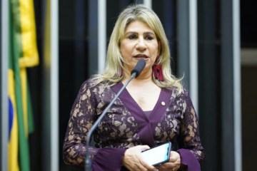 NA CÂMARA FEDERAL: Edna Henrique defende Programa Médicos pelo Brasil e Agentes de Saúde