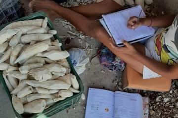 farinha - Crianças de 7 a 11 anos são retiradas do trabalho em casas de farinha na BA